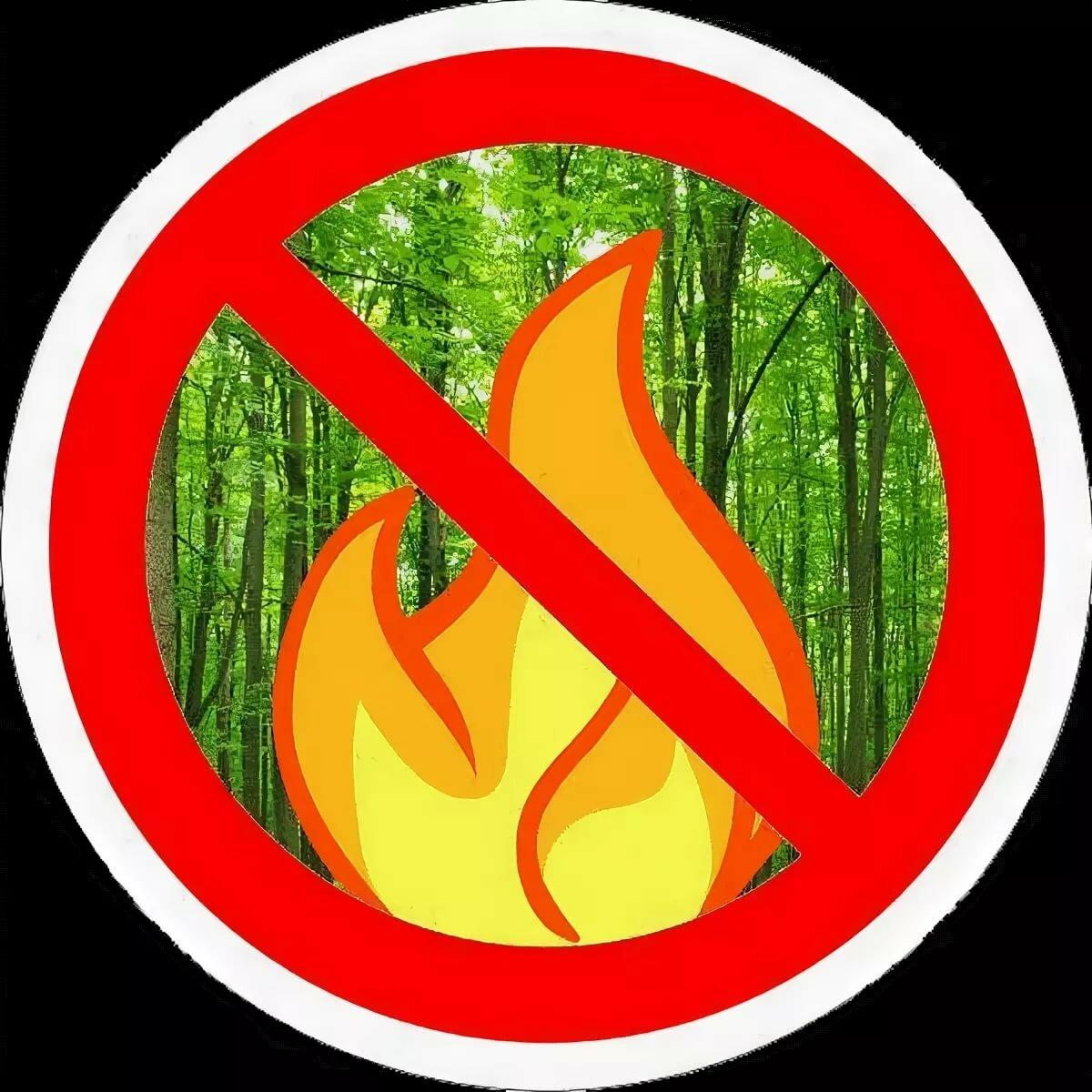 Знаки по защите леса в картинках