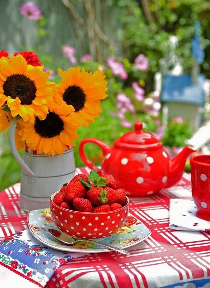 Картинки с добрым летним утром и хорошим, спасибо большое прикольные