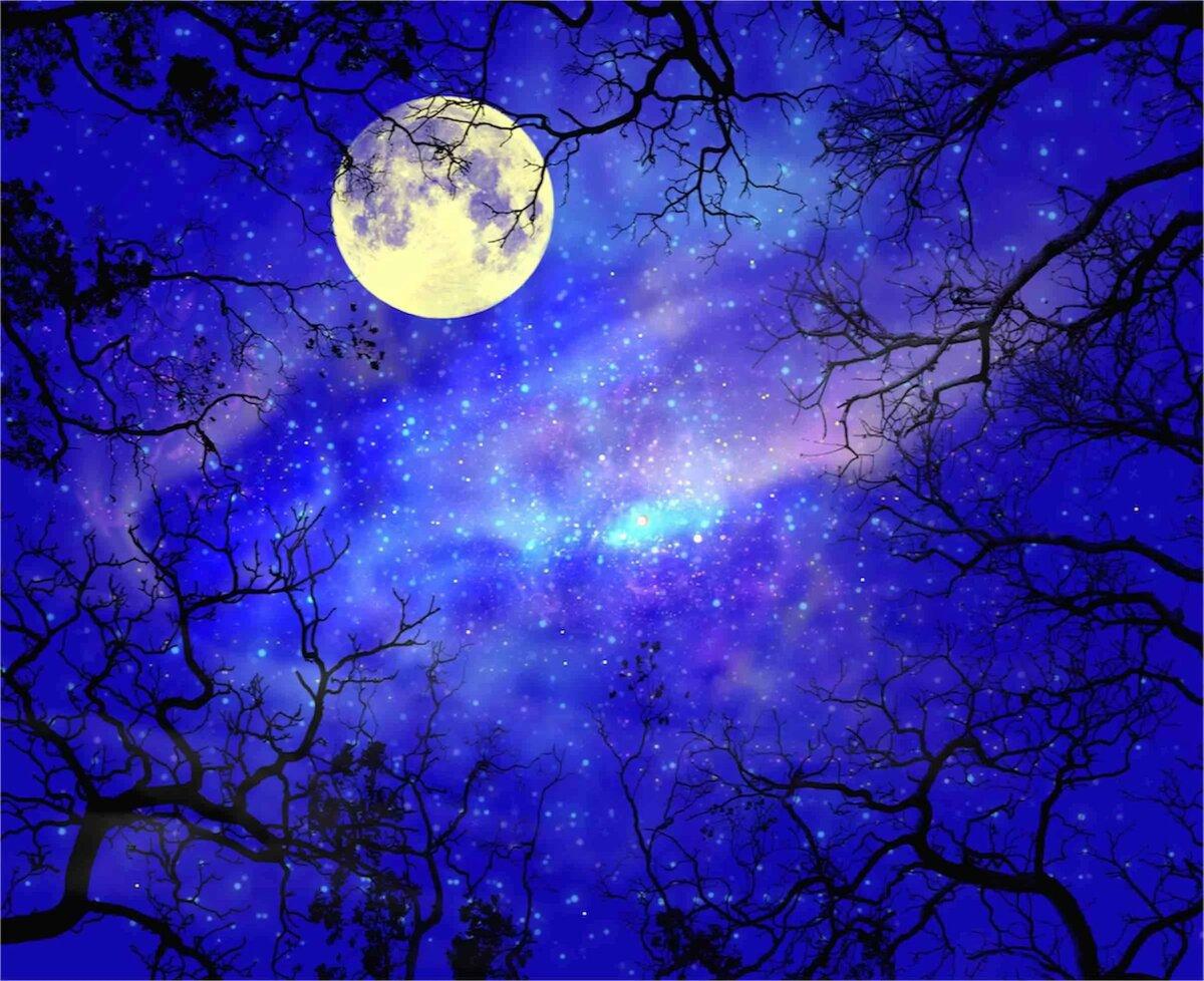 Красивые картинки с ночью с луной