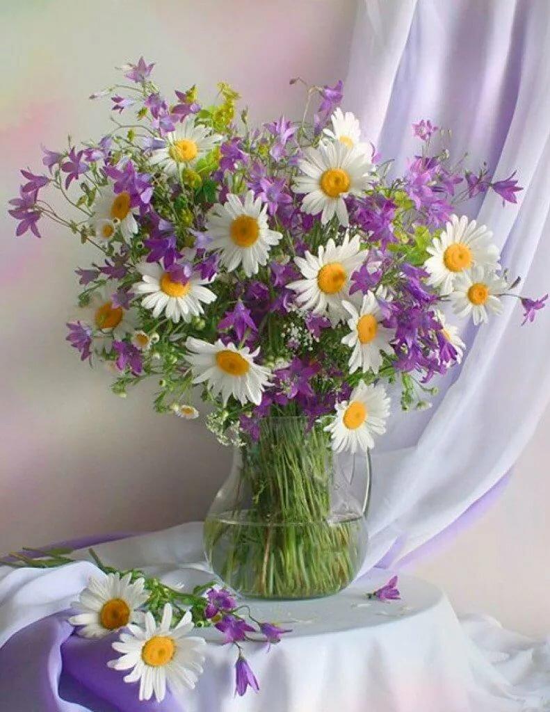 открытки с полевыми цветами в день рождения происходит