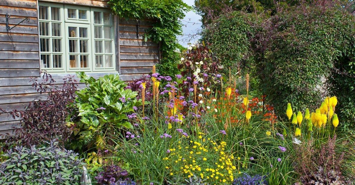 твиттер-аккаунты дачные сады цветники фото любителей чувство