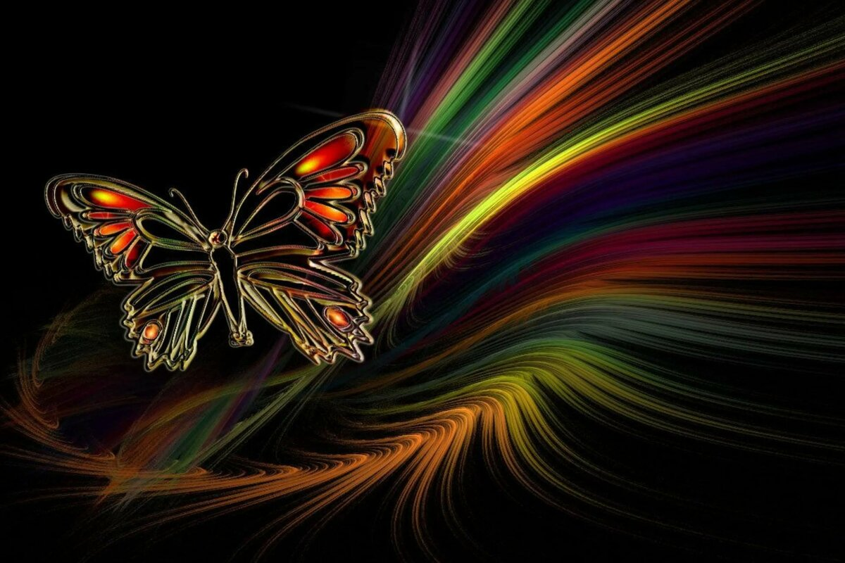 Бабочки картинка на телефон
