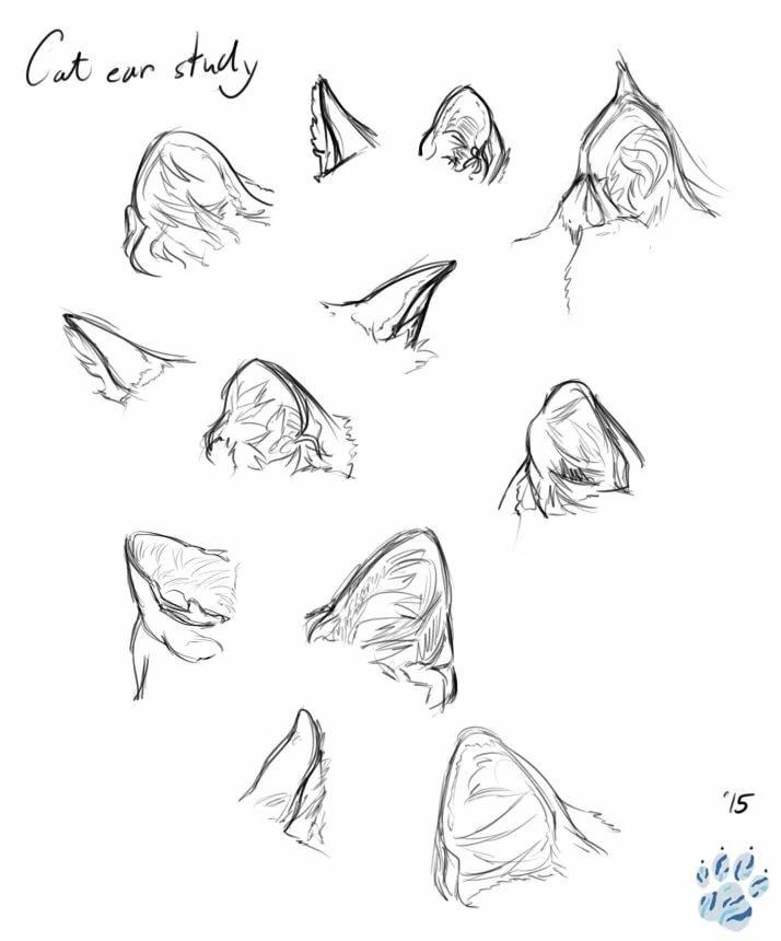 Кошачьи ушки рисунки