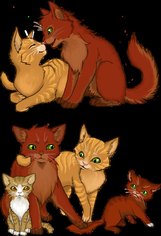 История в картинках коты воители