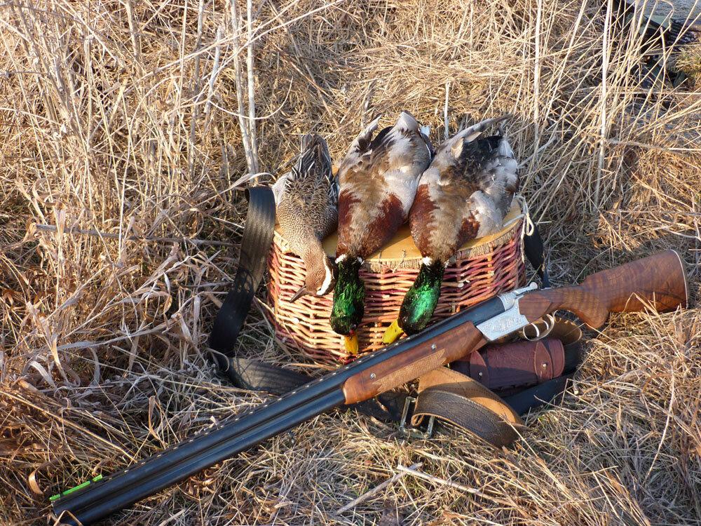 открытие охоты на утку в ульяновске картинка эрозии