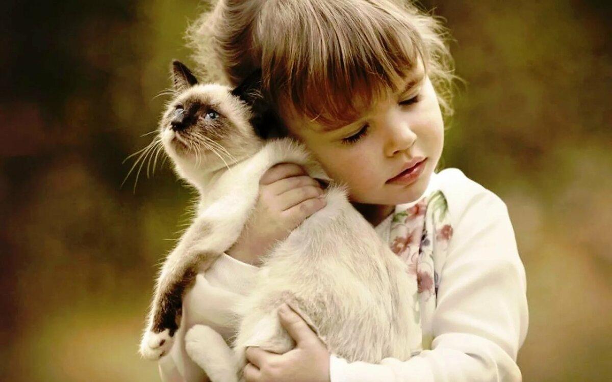 Картинки с забавными животными для детей, открытки