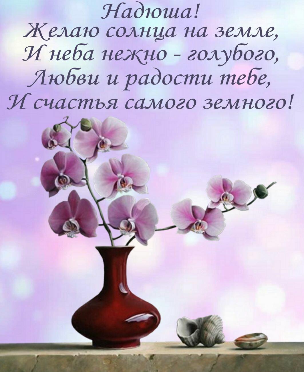 Самые, с днем рождения надежда стихи красивые открытки