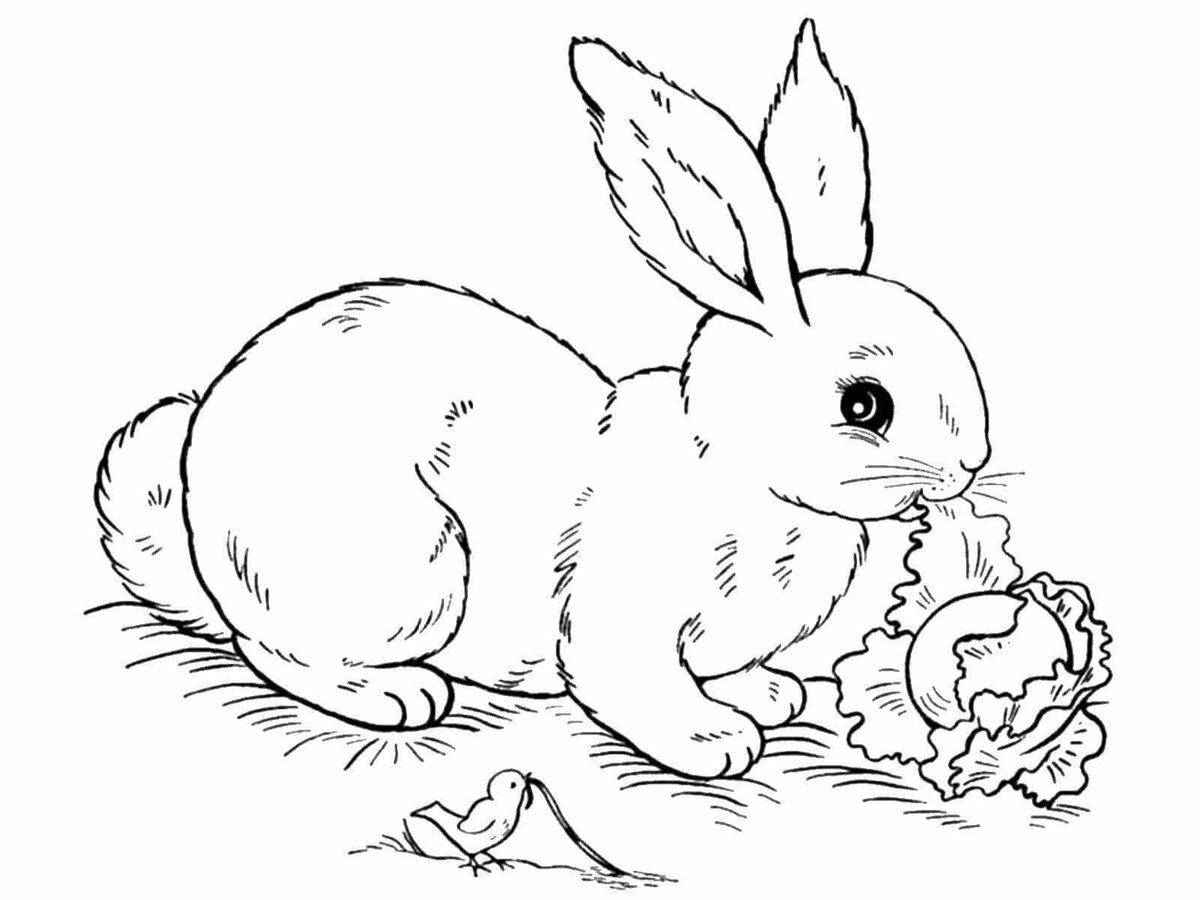 Рисунки которые легко нарисовать детям