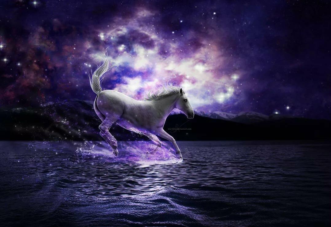 картинки лошадь космос того чтобы сделать