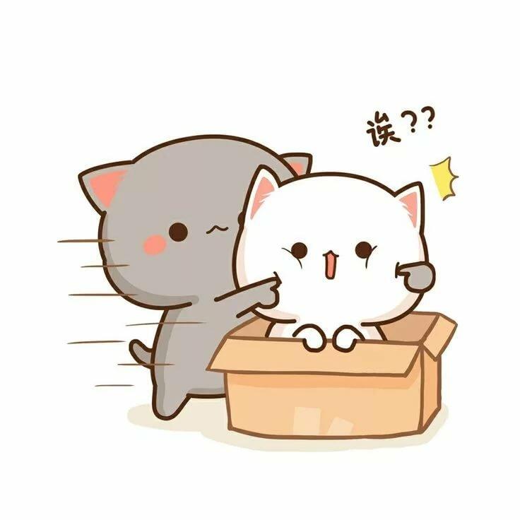 Картинки кавайный котик