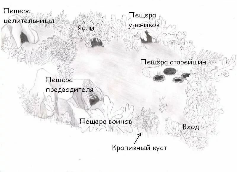 Коты воители картинки лагеря грозового племени