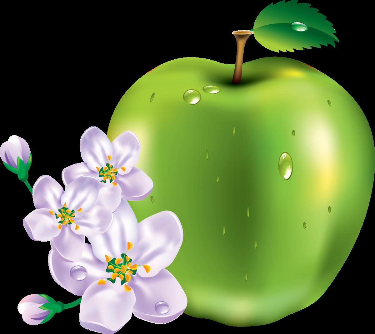 Яблочки открытки, прикол мой