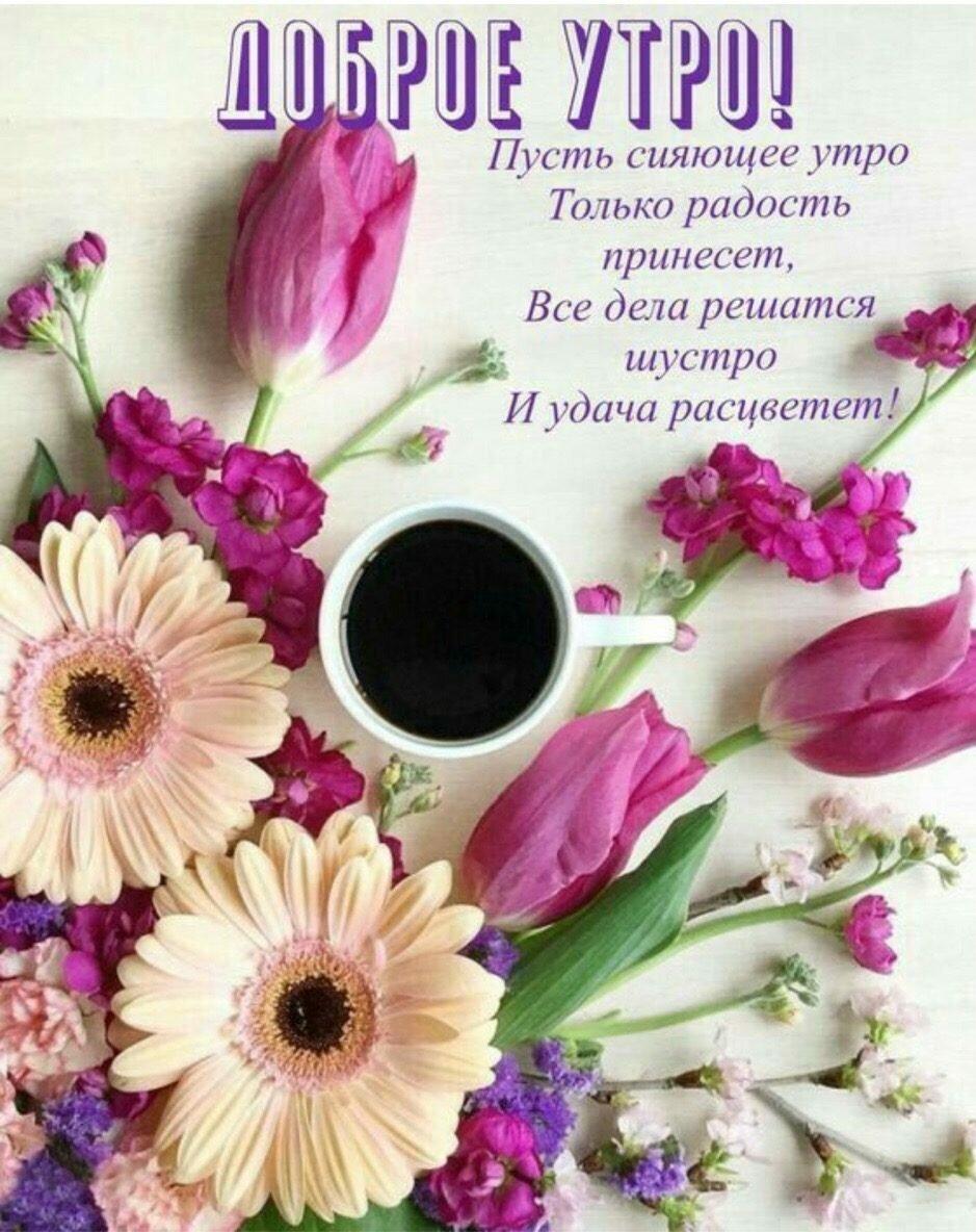 Цветы открытка с добрым утром, прикольные