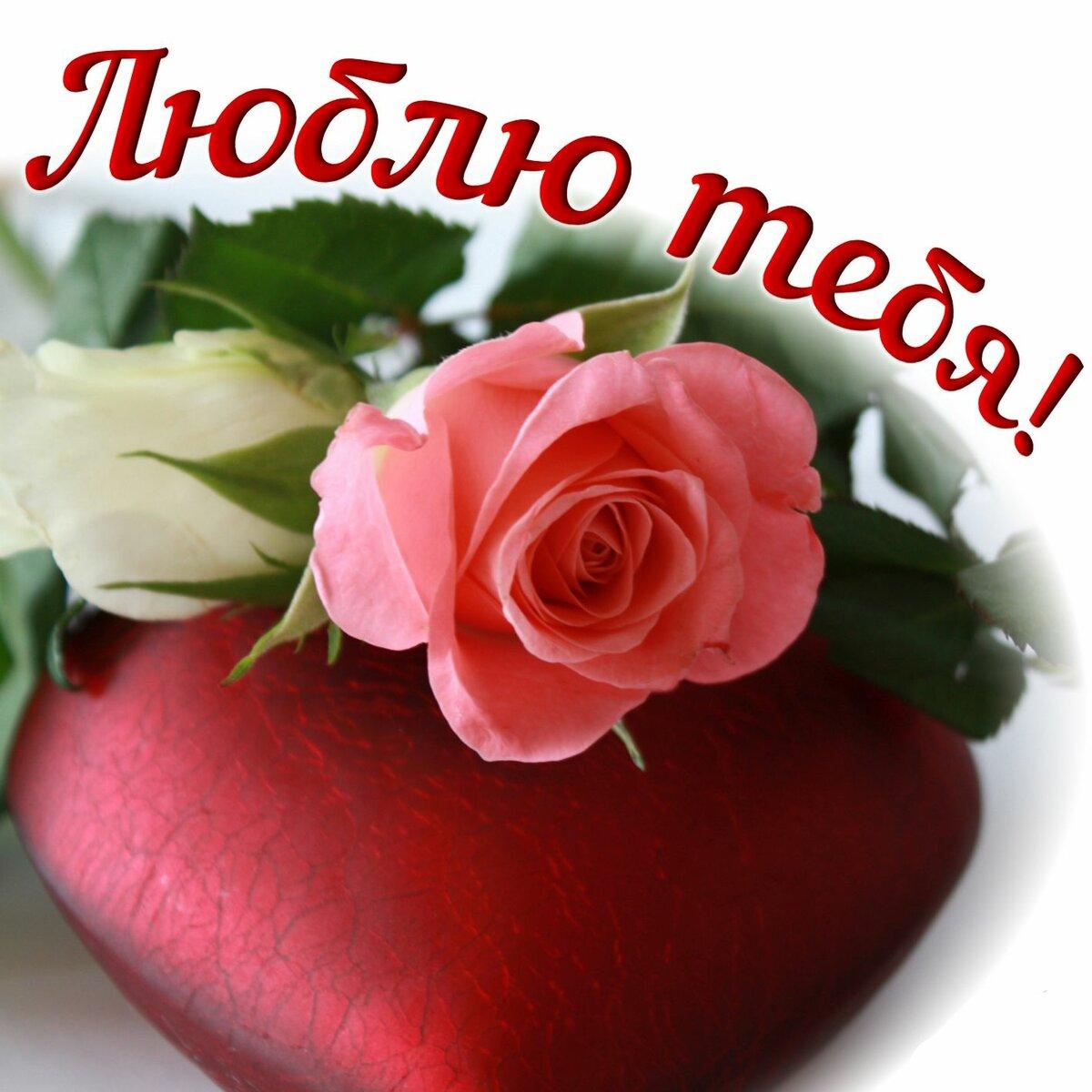 Картинки розы для любимой женщины, открытки марта