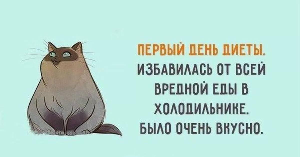Приколы Про Похудение Диеты.