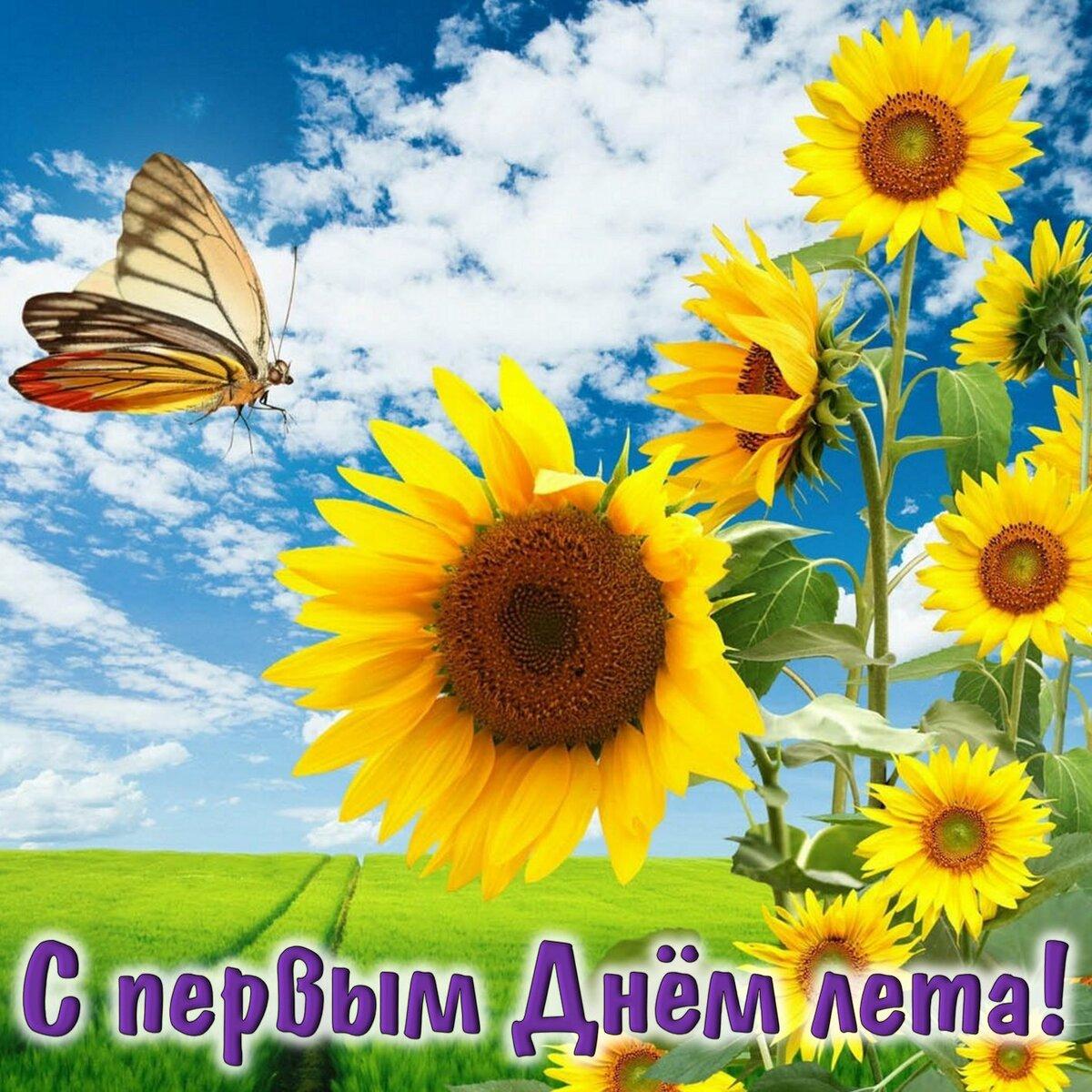 Картинки о начале лета