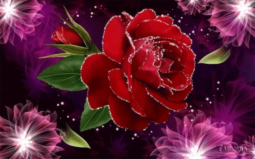 движущиеся открытки цветы ведь пока попробуешь