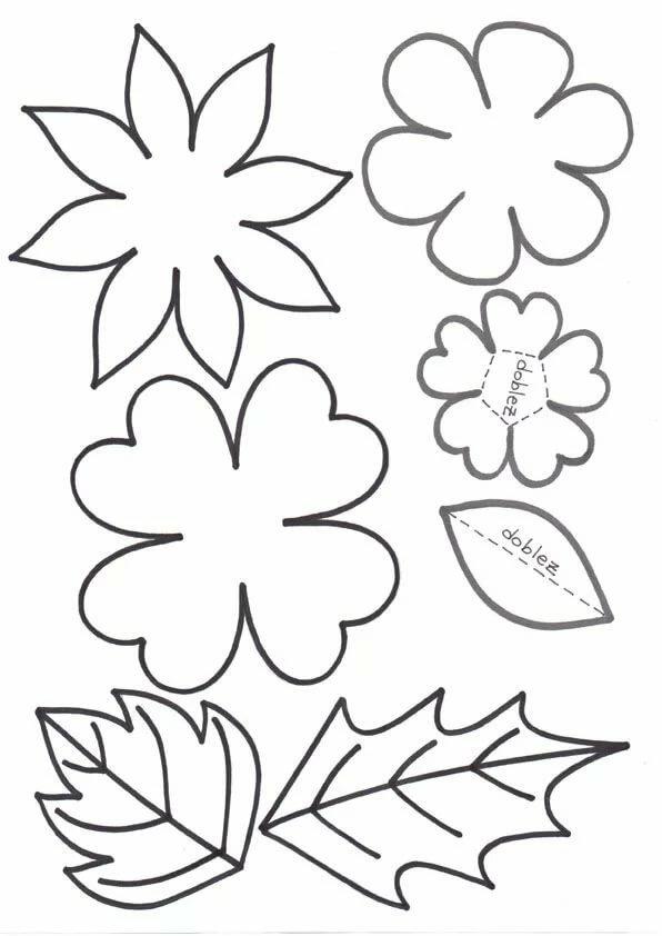 Шаблоны цветов для открытки в цвете фото