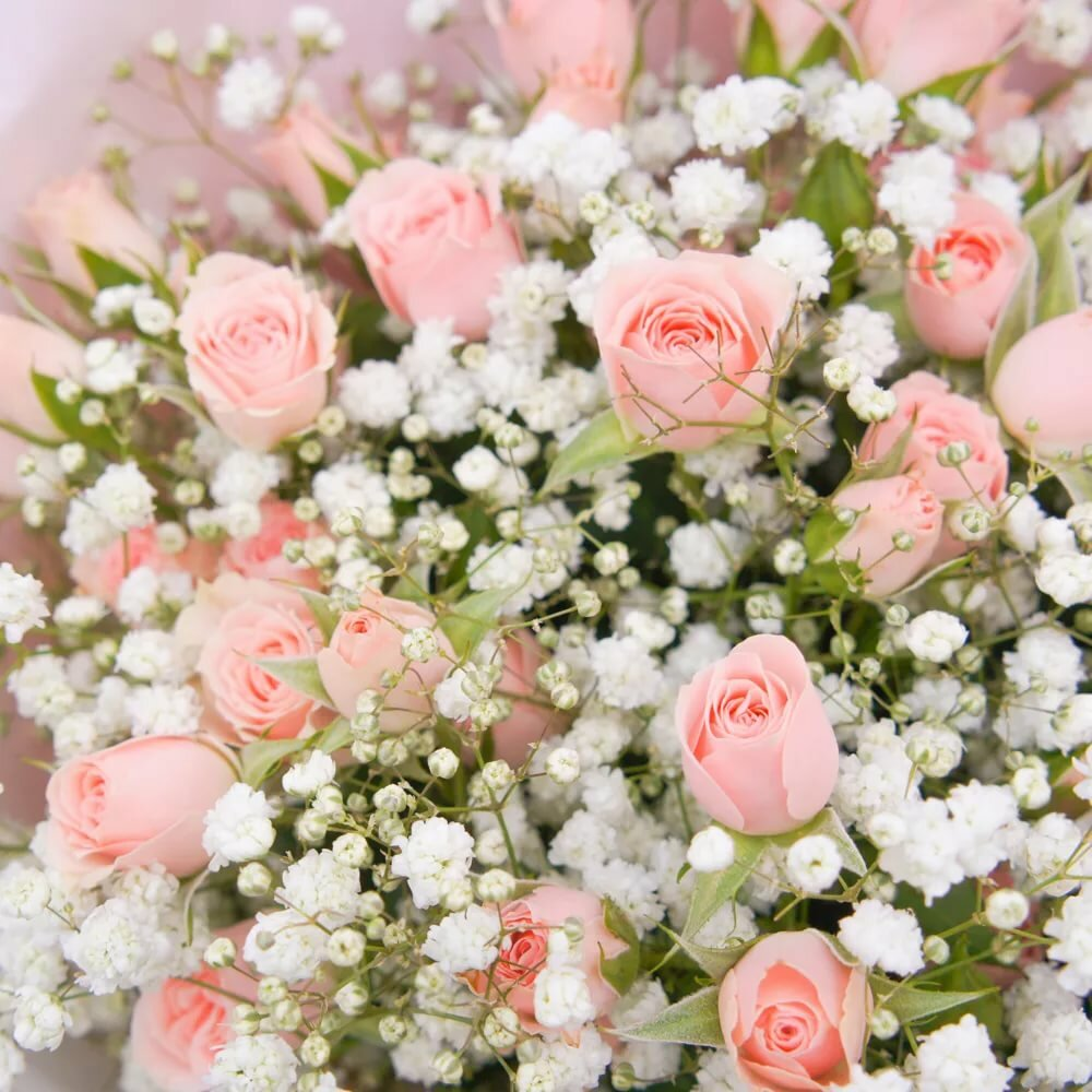приятно, картинки букеты нежно розовые которое так долго