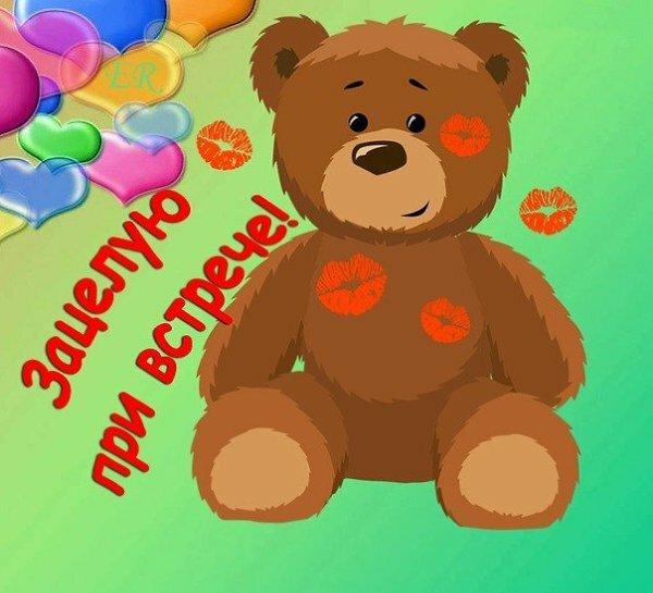 Картинка твой медвежонок