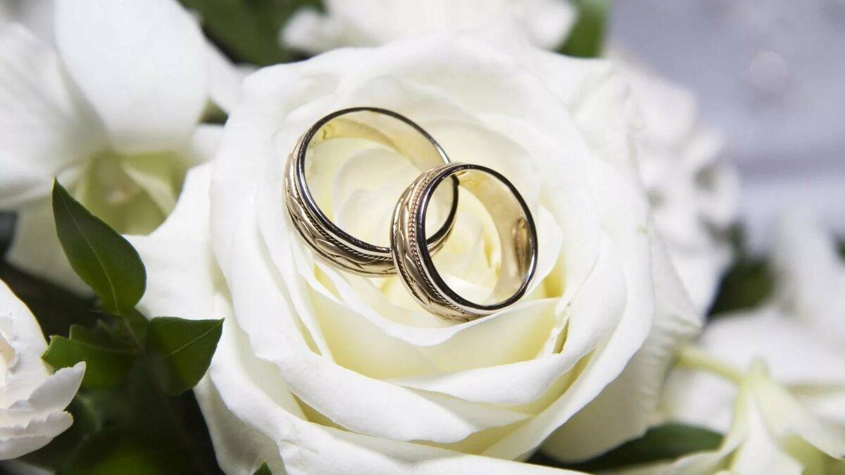 Открытки 31 год свадьбы, прикольные картинки