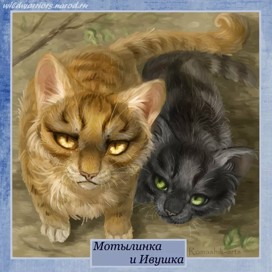 имена воителей коты воители тут