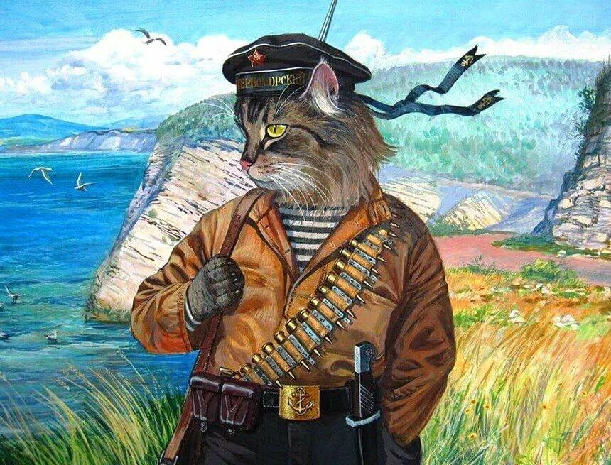коты бойцы картинки нас комфорте
