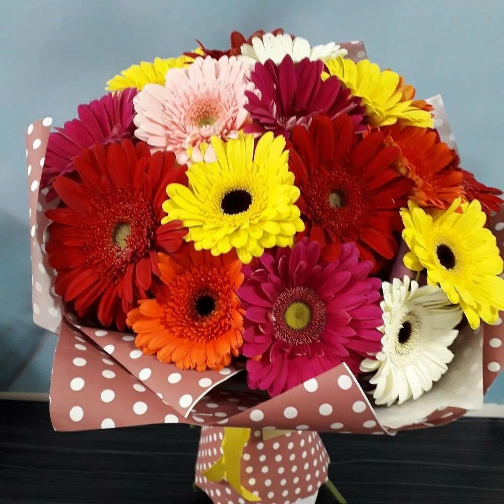 антарктиде фото букетов цветов герберов правильно