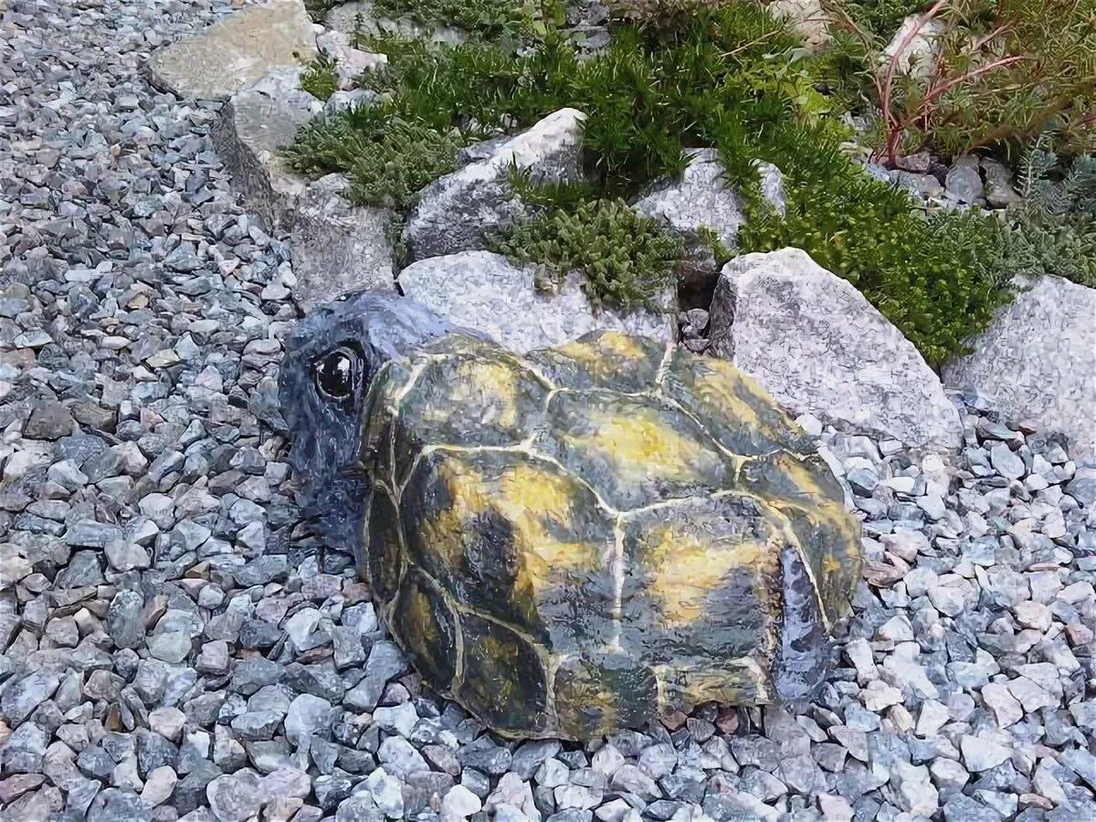 набором для рисуем на камнях для сада фото зайцев советский
