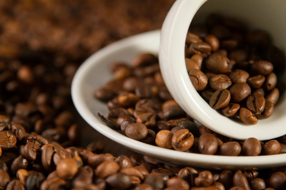 Зерна кофе картинки