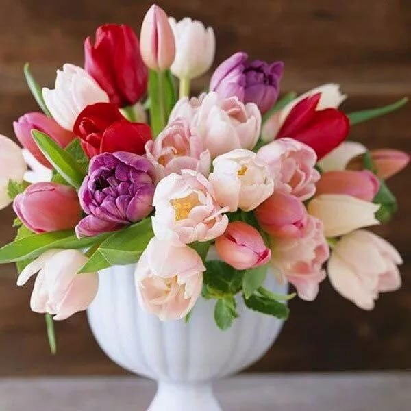 крохотной съемной картинки тюльпаны красивые букеты в вазе стильно