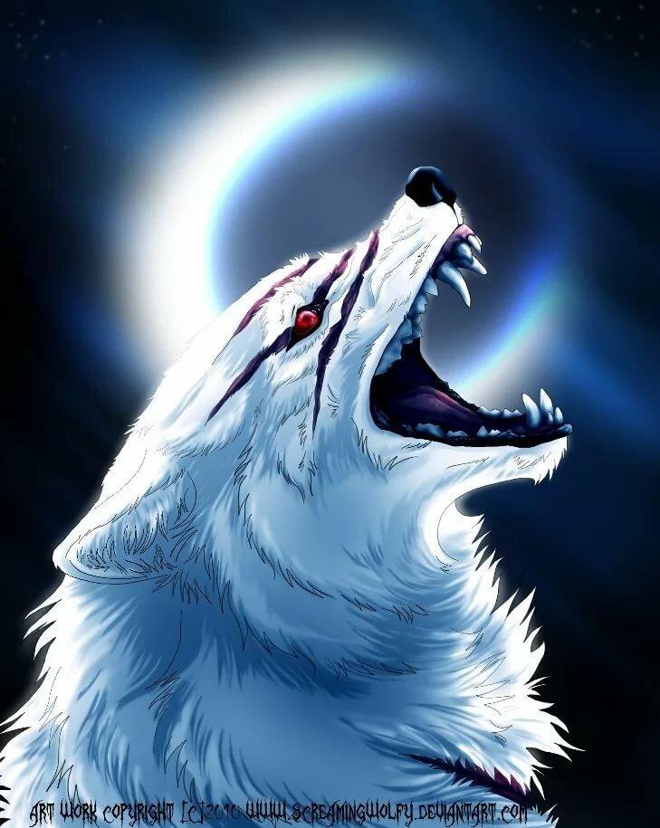 самые крутые картинки про волков услуга