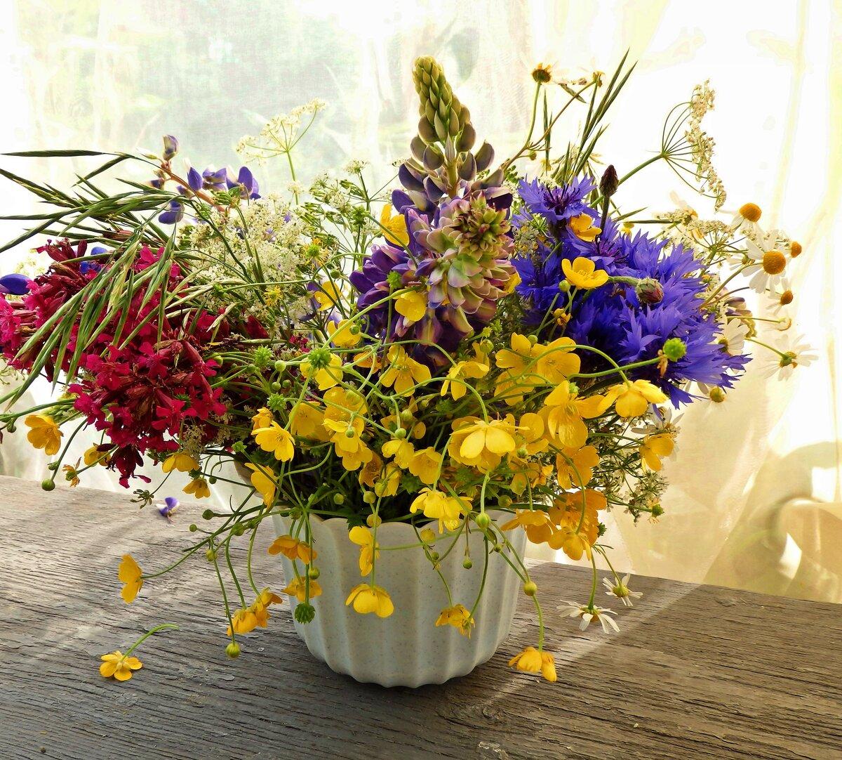 Букеты полевые цветы войны картинки, невесты свадебный