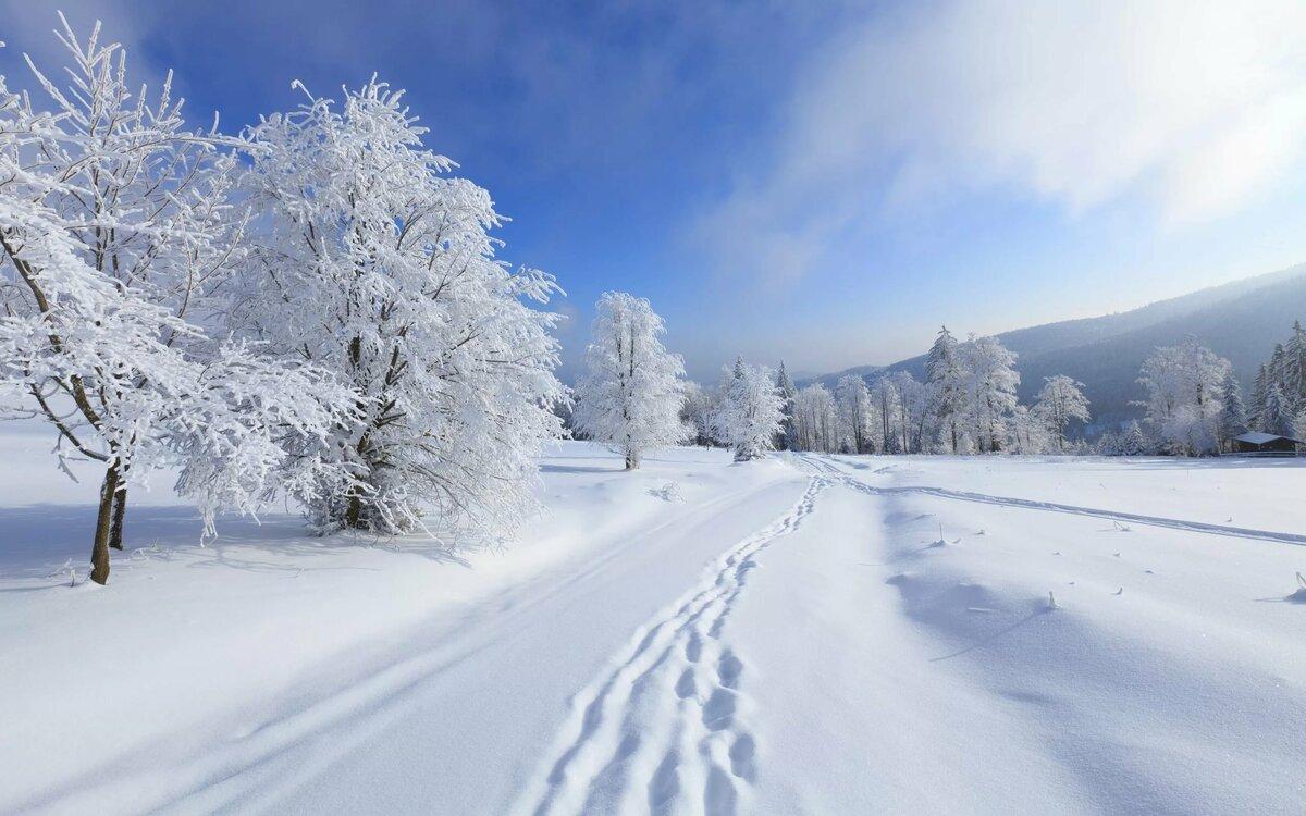 Фото картинки зимняя