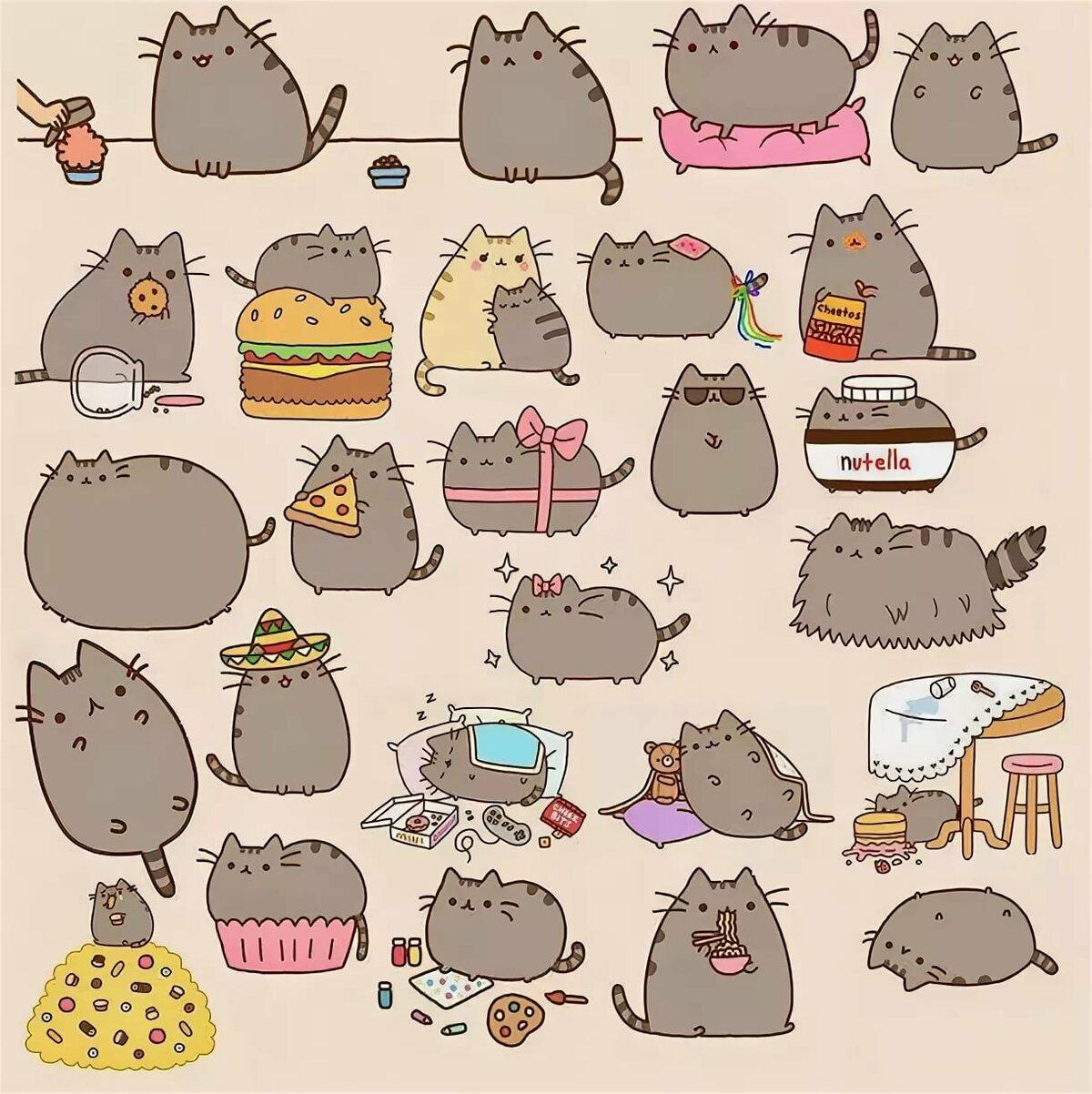 Серый кот картинки для срисовки