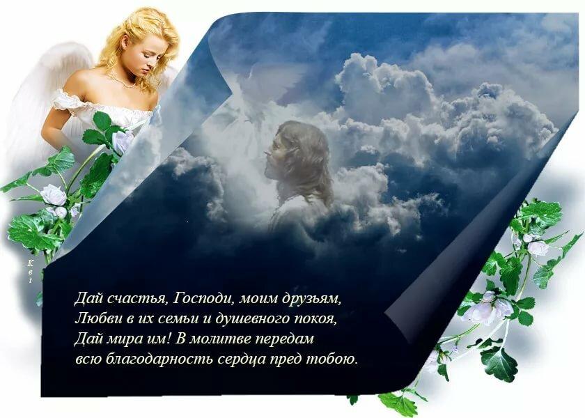 жду открытки о земном счастье описание как выращивать
