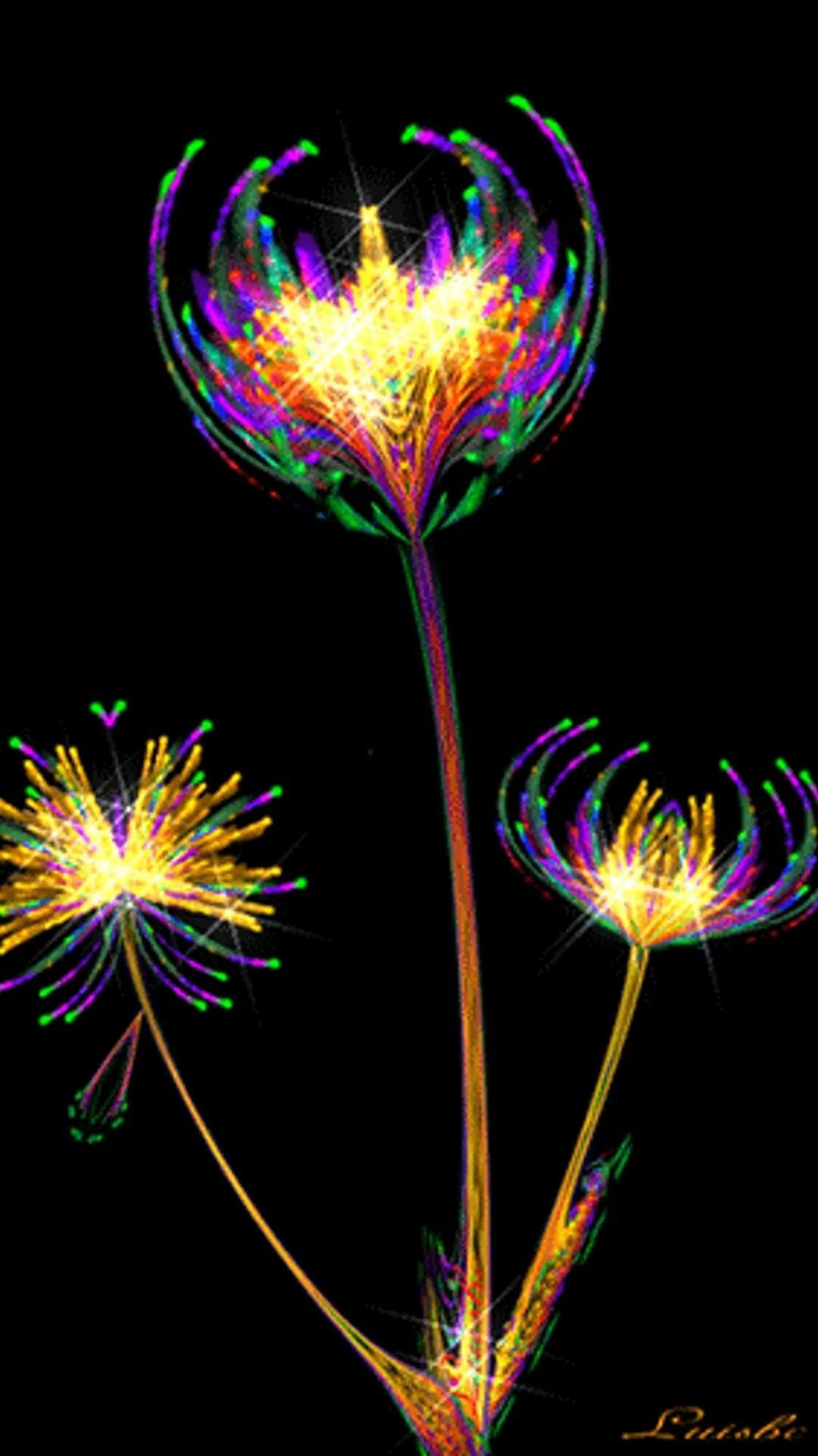 Фотографии цветка ириса была нужна