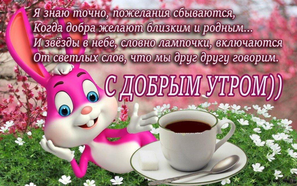 Картинки доброе утро хорошего дня друзьям, рекламу