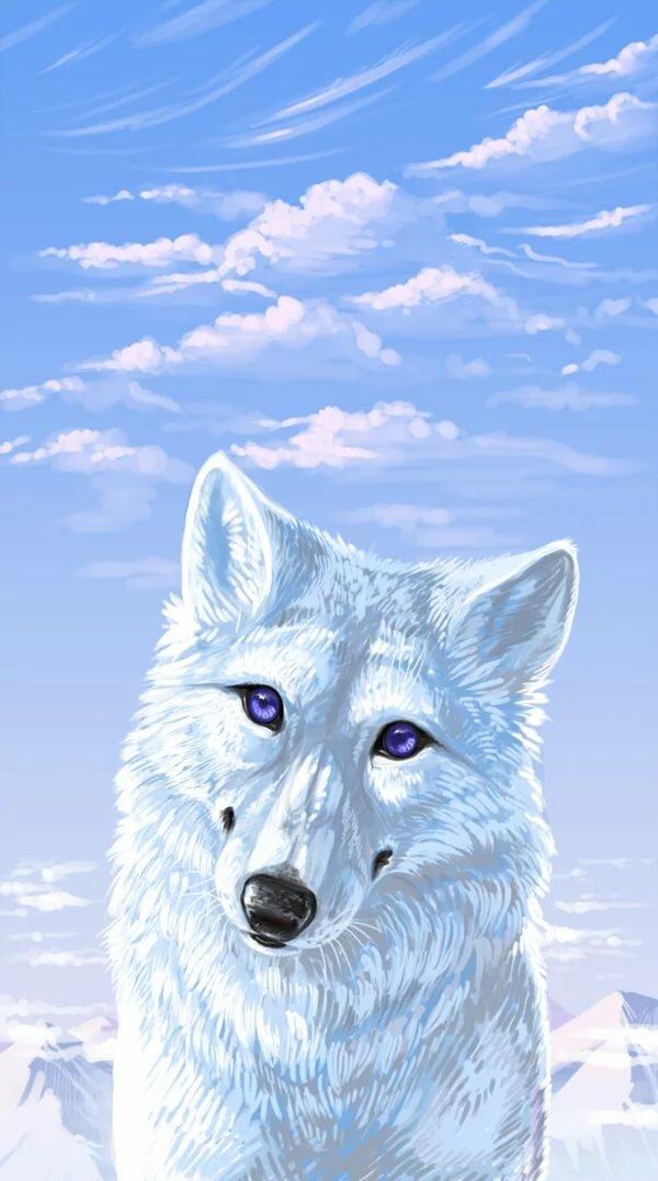 Картинки белых волков с синими глазами