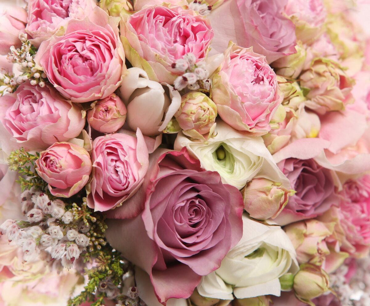 Картинки со цветами — img 11
