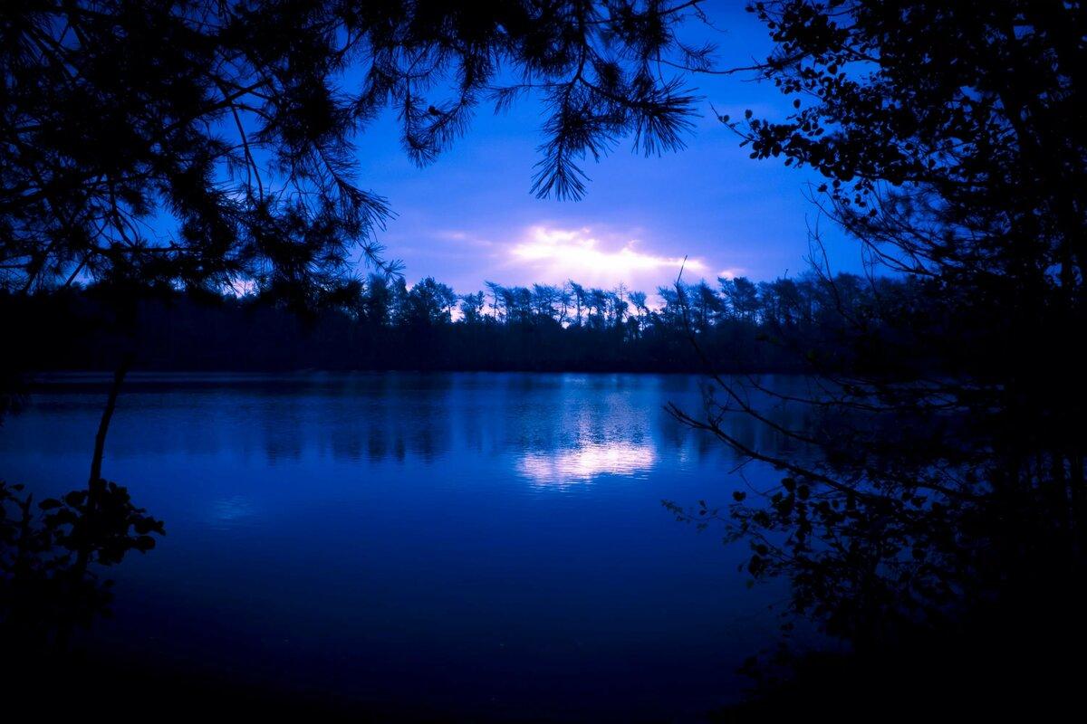 мне картинки лесное озеро ночью компактно упакован