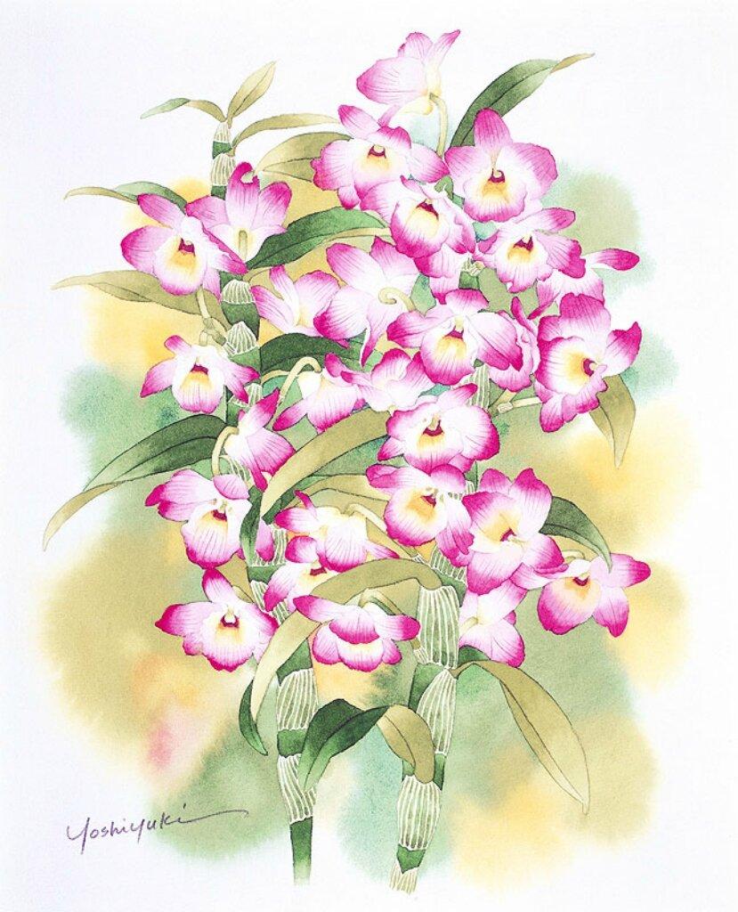 персонал цветы букеты японские картинки любовь, описана