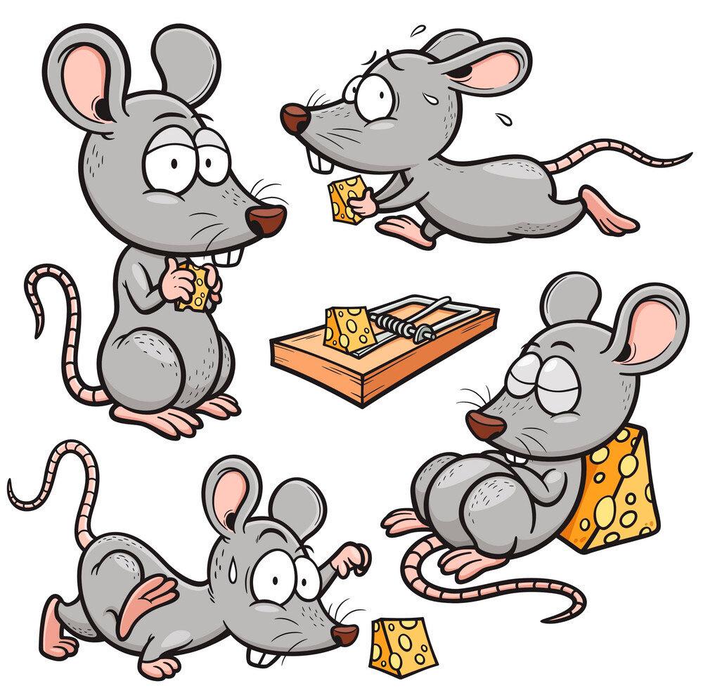 должно картинки прикольных крыс в векторе питание первый