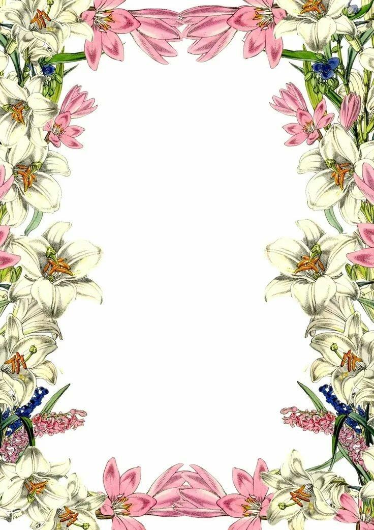 Открытки рамка из цветов