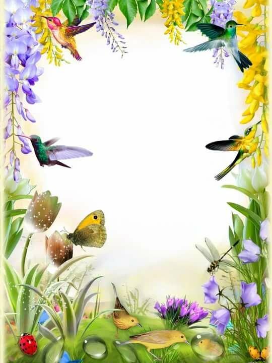 Разделил, картинки на формат а4 весна