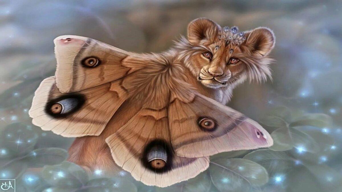 Обои на телефон живые бабочки