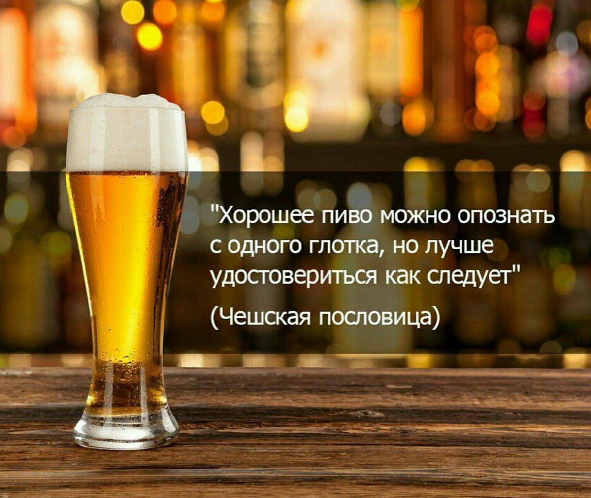 Пиво приколы в картинках, вторым