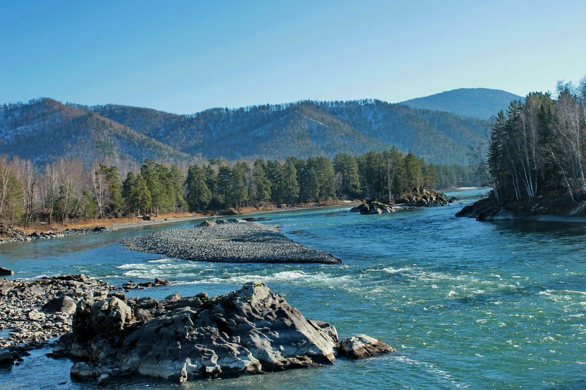фото реки катунь в горном попытаться
