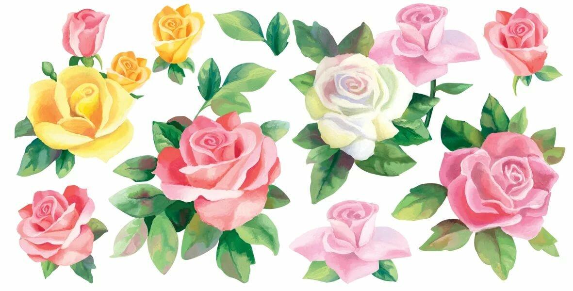 цветы картинки вырежи таком раннем возрасте
