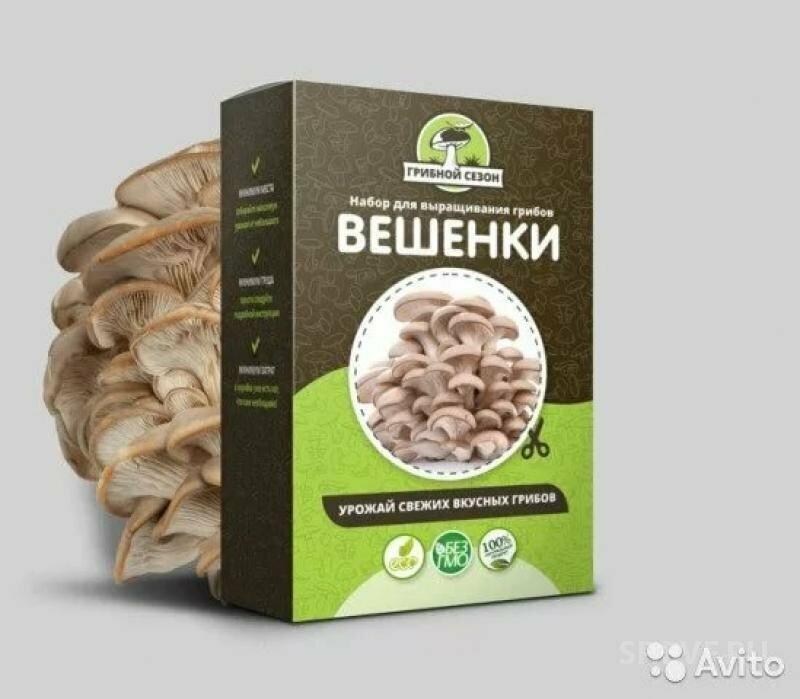 Набор для выращивания грибов Домашняя Грибница в Черновцах